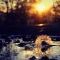 Преподобен Јован Карпатски:За да не му позволуваме на нашиот ум да лета и да се расејува