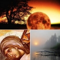 Митрополит Струмички Наум: Како одат работите... (22.11.2020)