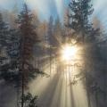 Свети Игнатиј Брјанчанинов - За прелеста