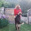 Слаѓана Ставрева: Во спомен на Караман, кучето кое беше горски цар